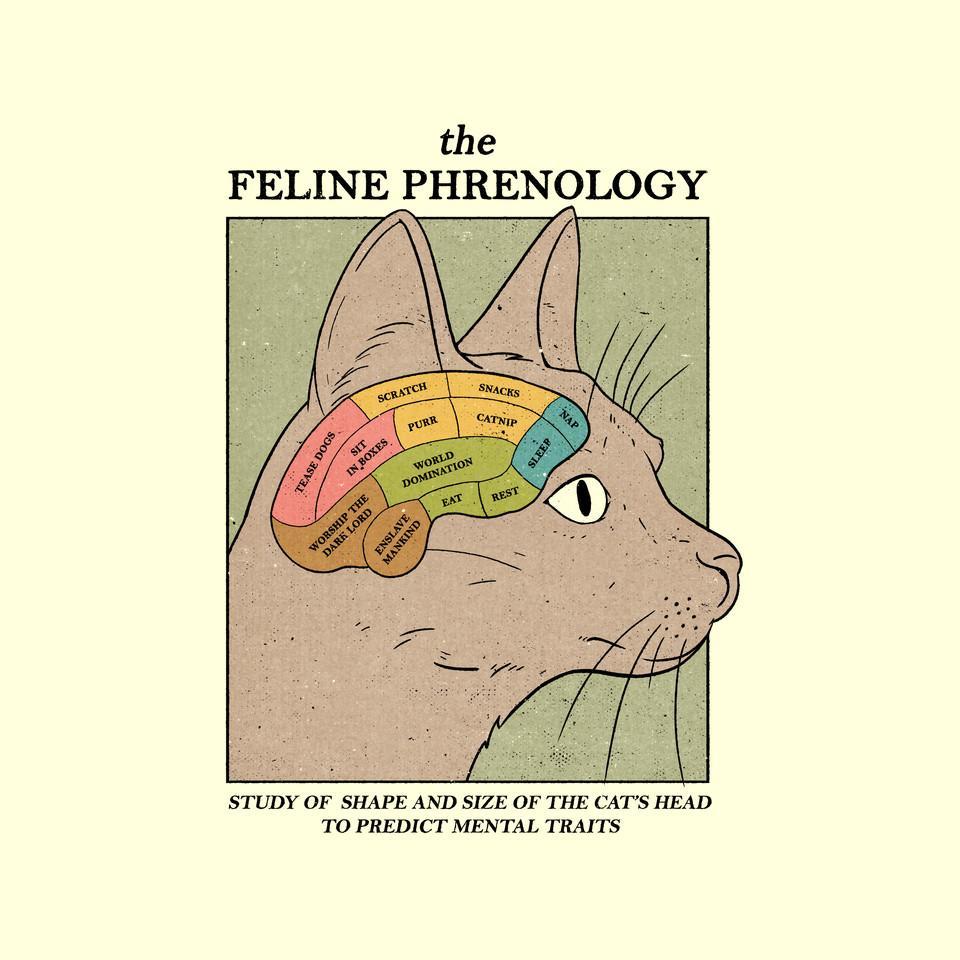 TeeFury: The Feline Phrenology