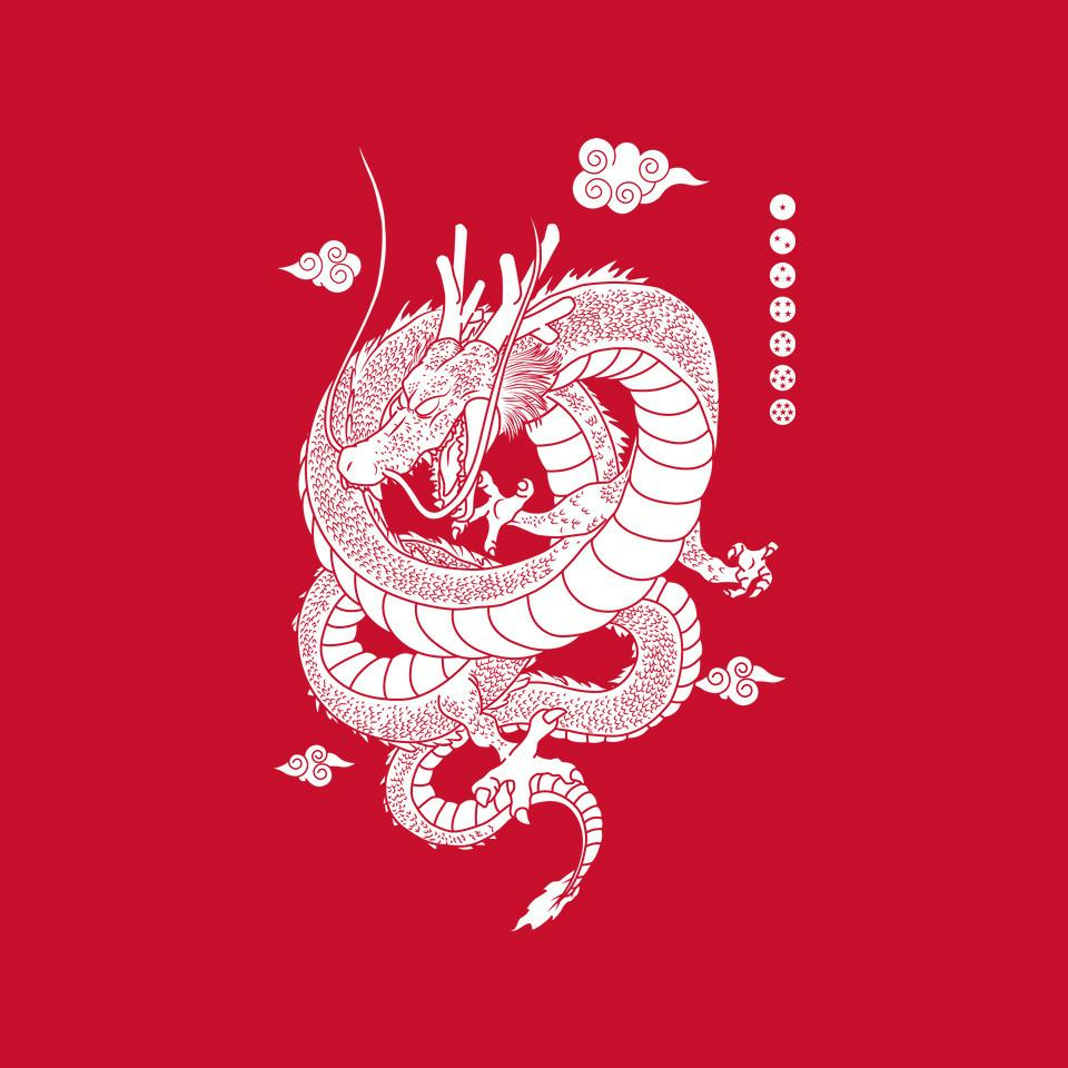 TeeFury: Shenlong