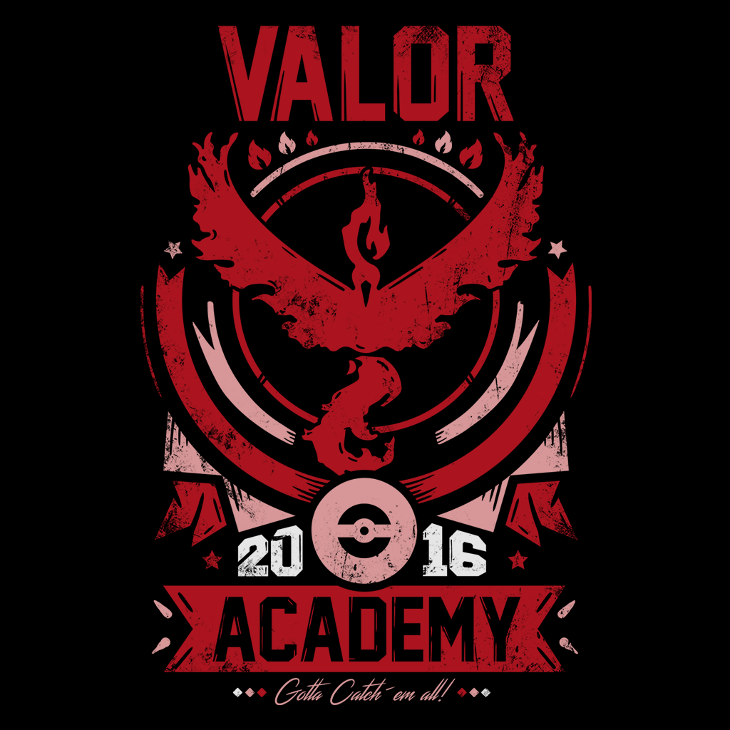 Pop-Up Tee: Valor Academy