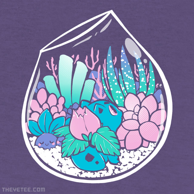 The Yetee: Starter Terrarium Set