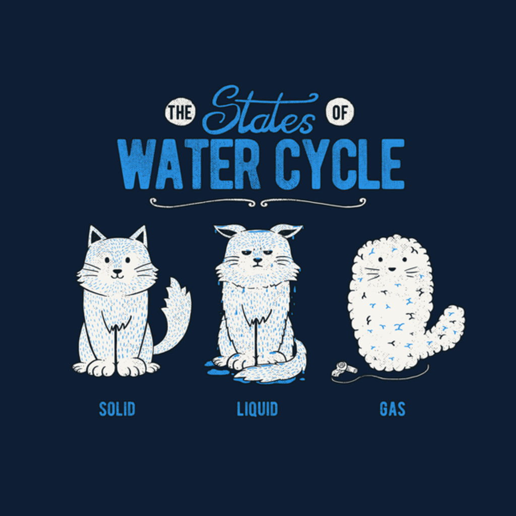 NeatoShop: The States of the Water Cycle