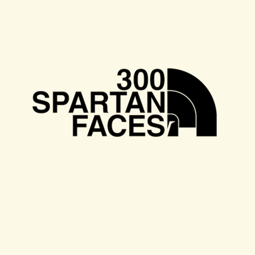 NeatoShop: 300 Faces