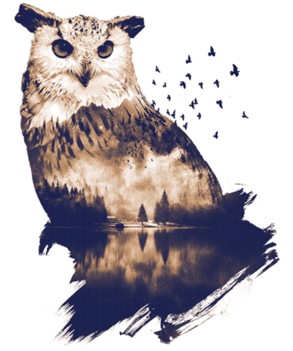 Qwertee: Forest Owl