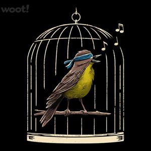Woot!: Follow the Birds