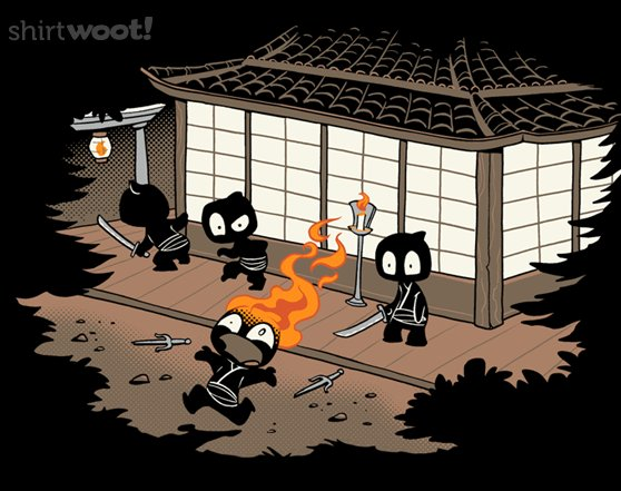 Woot!: Unstealthiest Ninja - $7.00 + $9 two-day shipping