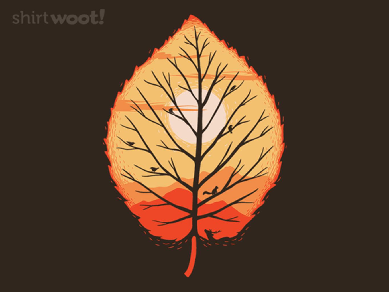 Woot!: Fall Sunset