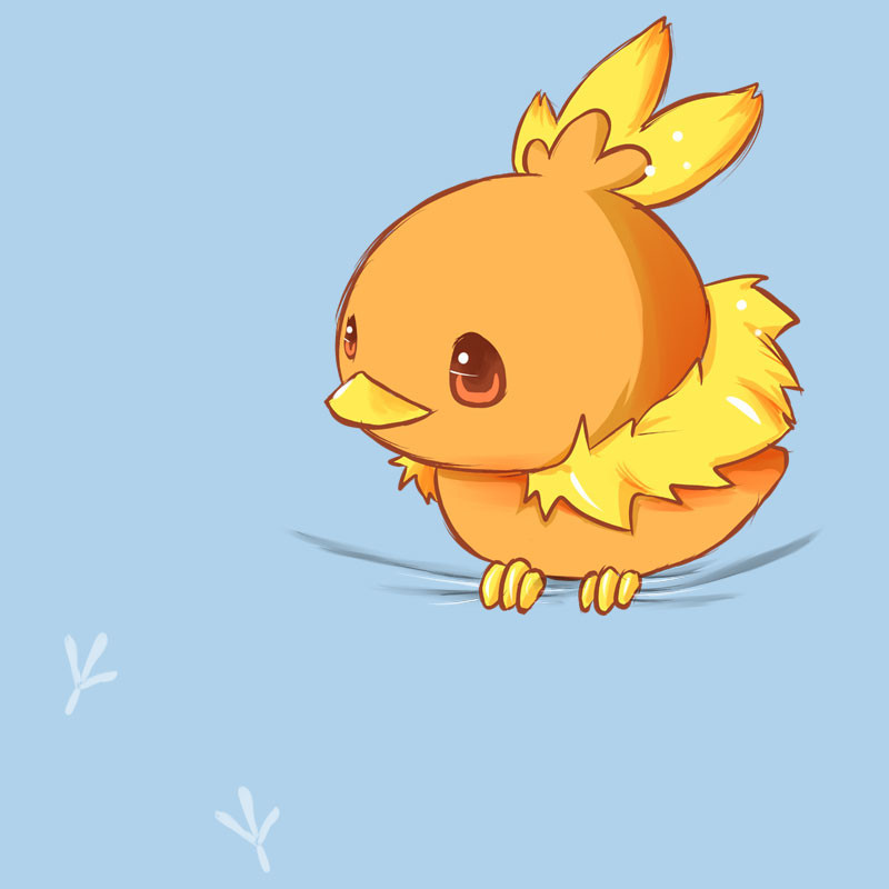 Snappy Kid: Torchic