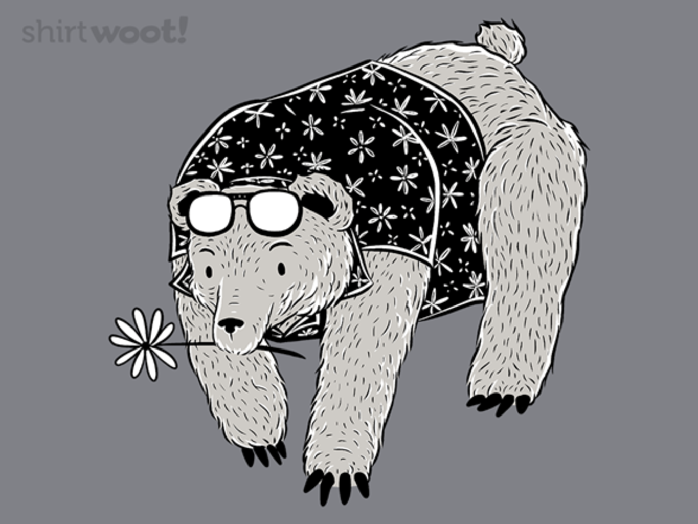 Woot!: Bear Goes to Florida