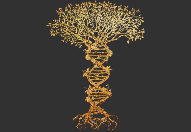 Design by Humans: Tree of life