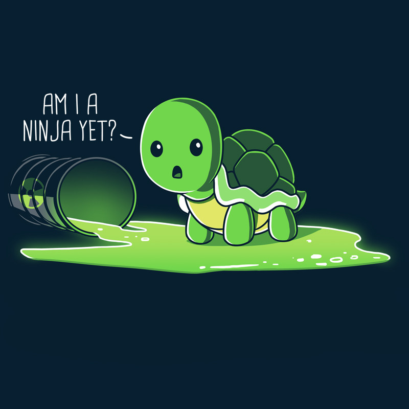 TeeTurtle: Am I A Ninja Yet?