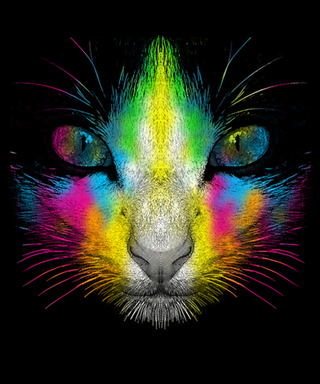 Qwertee: Techni Color Cat
