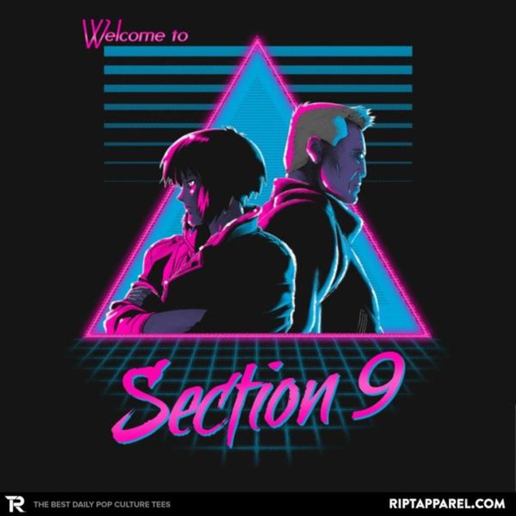 Ript: Section 9