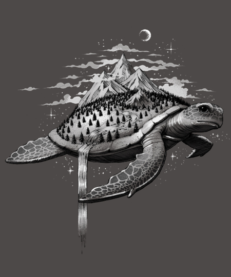 Qwertee: Adventure Turtle