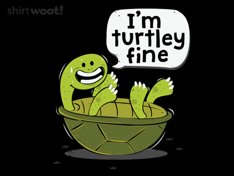 Woot!: Turtley Fine